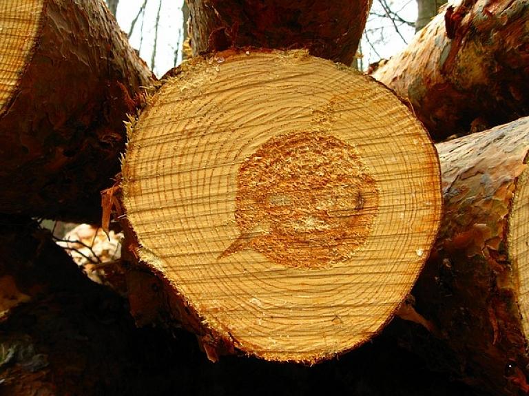 """Kokmateriālu ražotāja """"Albionus"""" apgrozījums pērn saruka par 16,3%"""