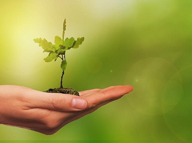 """""""Not Hot Environmental Solutions"""" investējis 500 000 eiro mobilās lietotnes un kalkulatora izstrādē cīņai ar klimata pārmaiņām"""