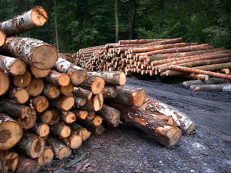"""Pērn mežsaimniecības un kokapstrādes nozarē līdera pozīcijas saglabā """"Latvijas valsts meži"""""""