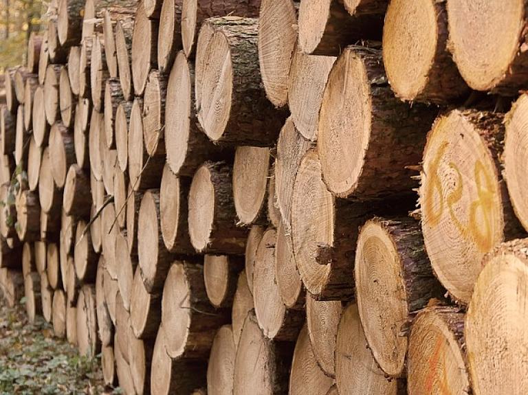 """Pērn kokapstrādes un pārstrādes, kā arī papīra ražošanas nozares topa līdera pozīciju saglabāja """"Latvijas finieris"""""""
