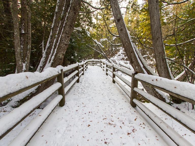 Apciemo ainavisko Jaunsventes muižas parku un dabas takas