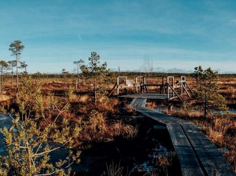 Planču purva taka – iepazīsti augstā purva ekosistēmu Ziemeļvidzemē