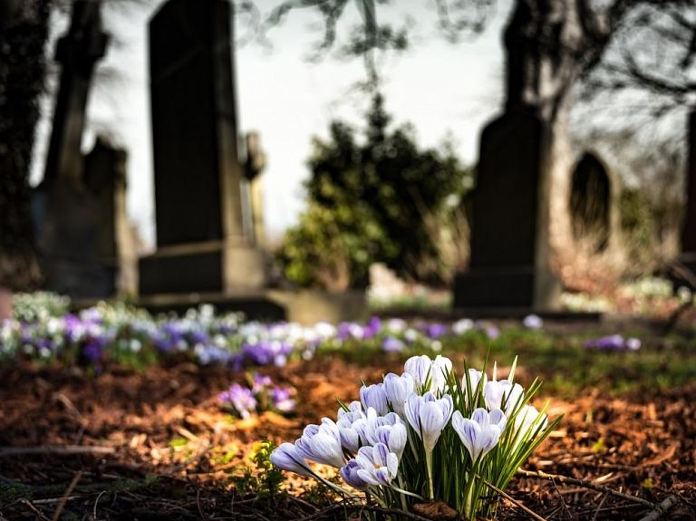 Sarkanarmiešu brāļu kapi Vaiņodē
