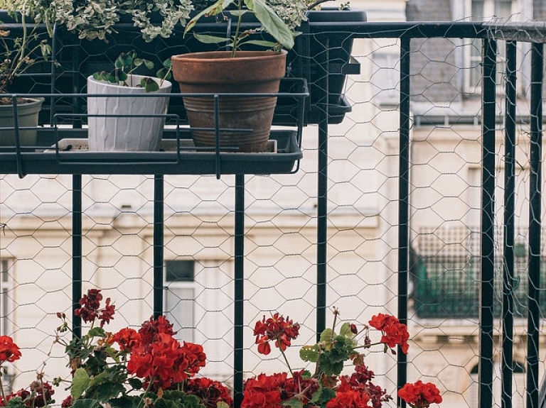 Labas idejas, kā izveidot dārzu uz balkona