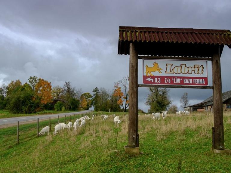 """Kazu ferma un siera ražotne """"Līvi"""""""