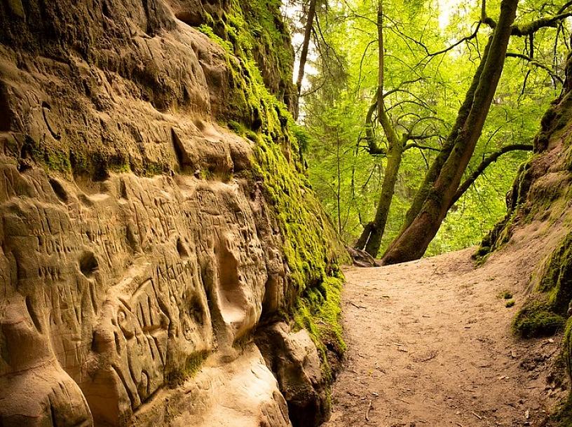 ivars tračums/flickr.com