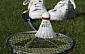 Rēzeknes bērnu - jaunatnes sporta skola uzņem audzēkņus