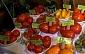 Valmierā atklāta tomātu izstāde