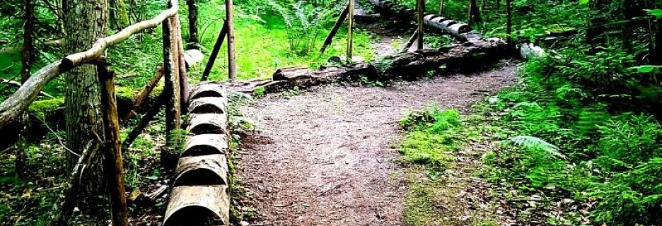 Cecīļu dabas taka, kas ved gar iespaidīgiem dabas veidotiem mākslas darbiem