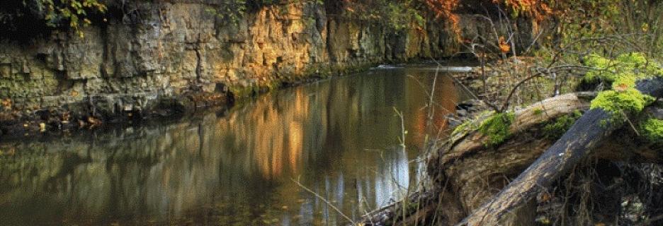 Neskartā daba un ģeoloģiskie pieminekļi Vizlas dabas takā