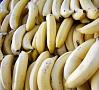 Foto: Pixabay|Beļģijas muitas dienests banānu kravā atradis 1,7 tonnas kokaīna.