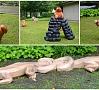 Publicitātes foto|Pateicoties Ogres novada pašvaldības veiksmīgajai sadarbībai ar Latvijas Mākslas akadēmijas studentiem un docentu Valti Barkānu, ogrēnieši var priecāties par septiņām jaunām koka skulptūrām pilsētas svētkos.