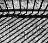 Foto: Pixabay|Granātas sprādzienā un apšaudē Filipīnu cietumā bojā gājuši desmit ieslodzītie.