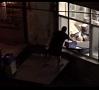 |Sociālajos tīklos un Krievijas ziņu vietnēs pamatīgas dusmas izraisījis video, kurā redzama pasta sūtījumu iekraušana piegādes mašīnā. Foto no video