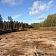Meža zemes transformācijas pakalpojums