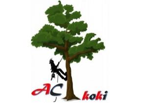 """""""AC koki"""", individuālais darbs"""